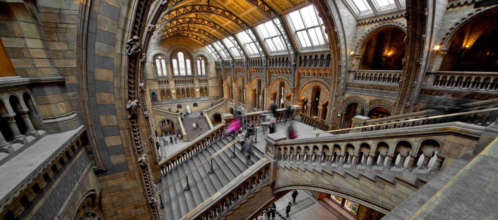 Natural History Museum Science