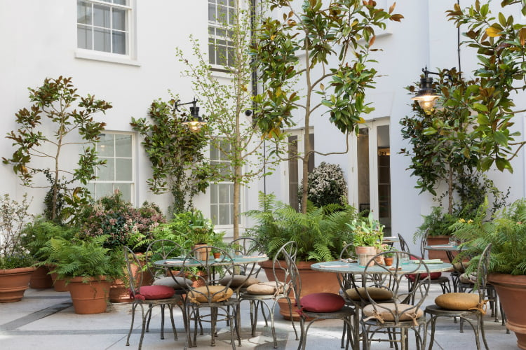 Petersham Nurseries Covent Garden - al fresco dining London