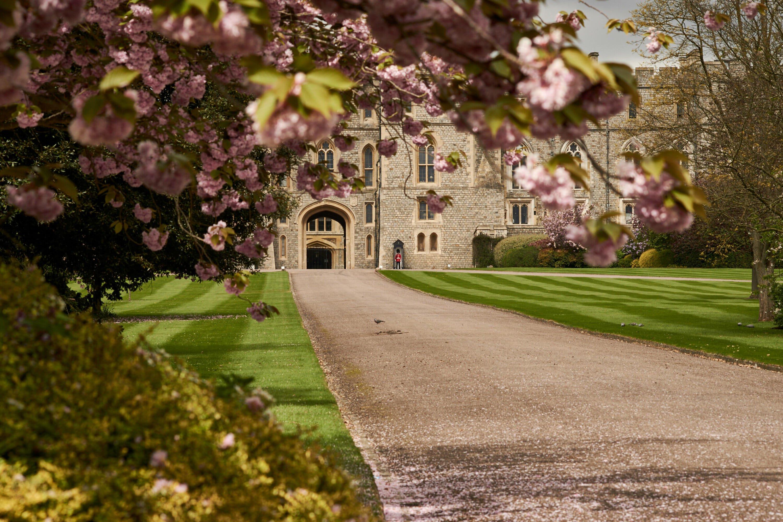 Windsor Castle day trips London