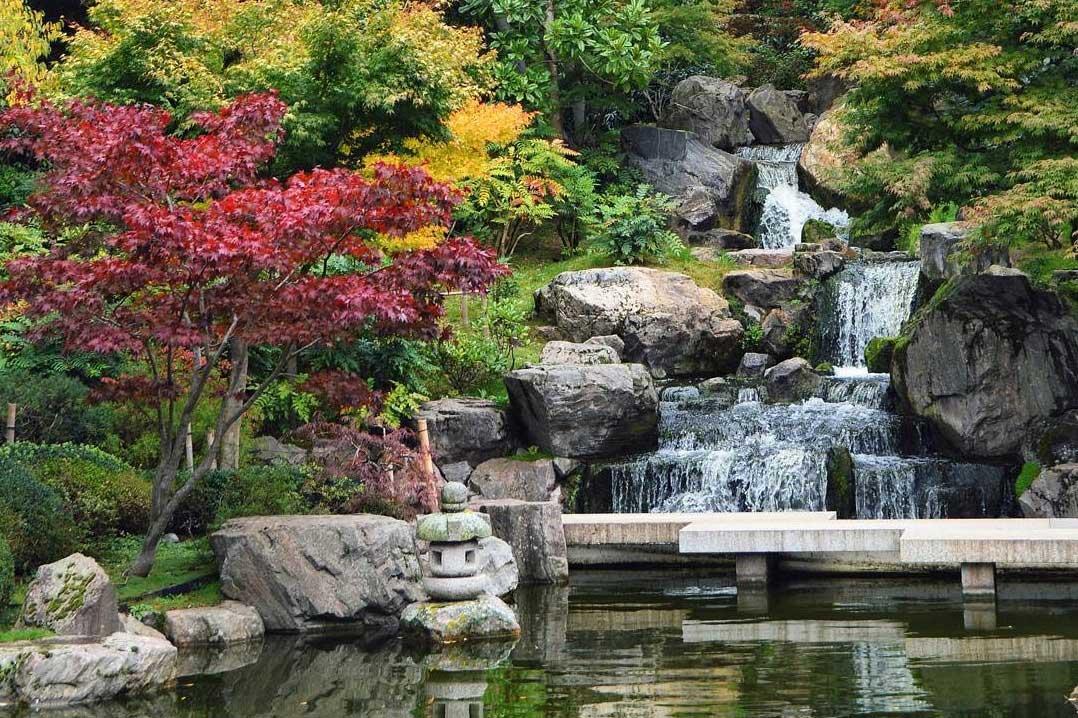 Kyoto garden sunny day london
