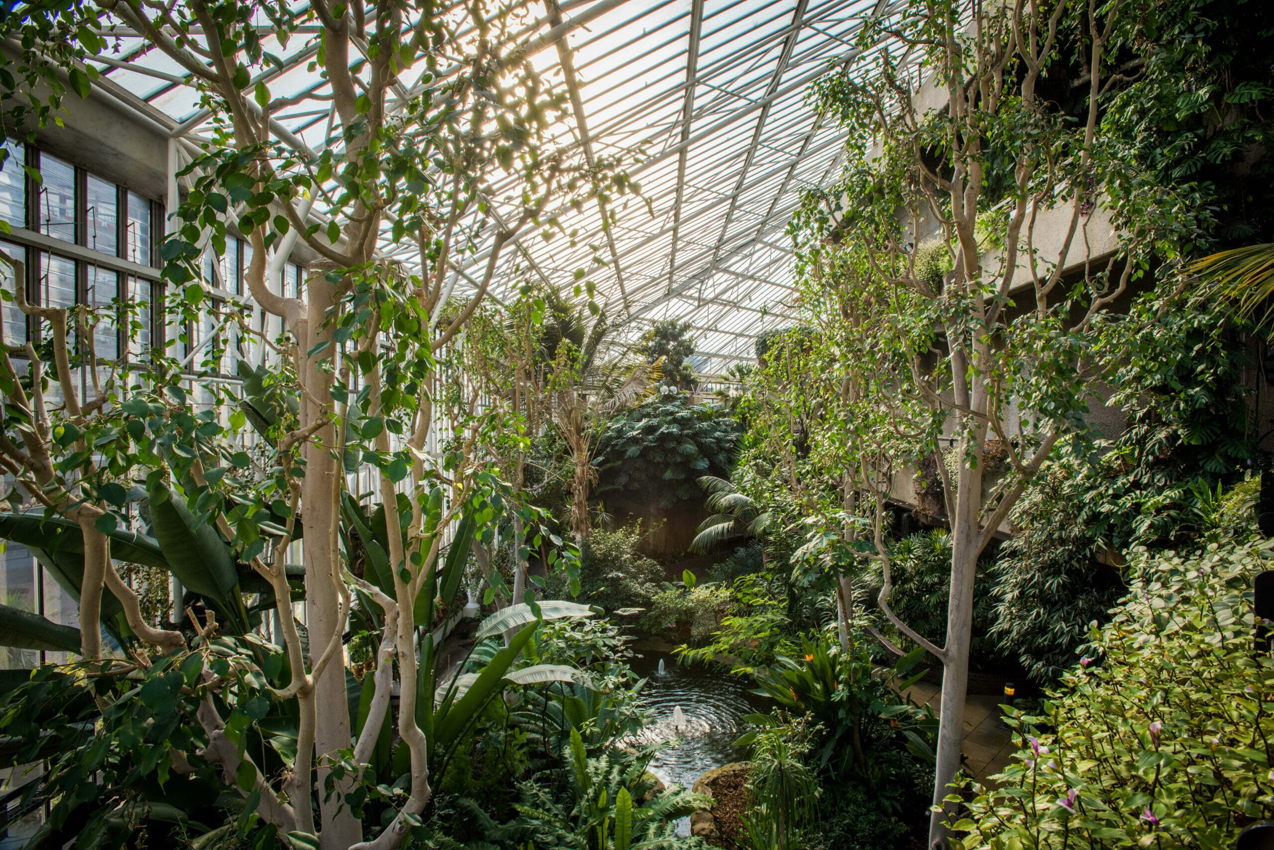 barbican conservatory date ideas