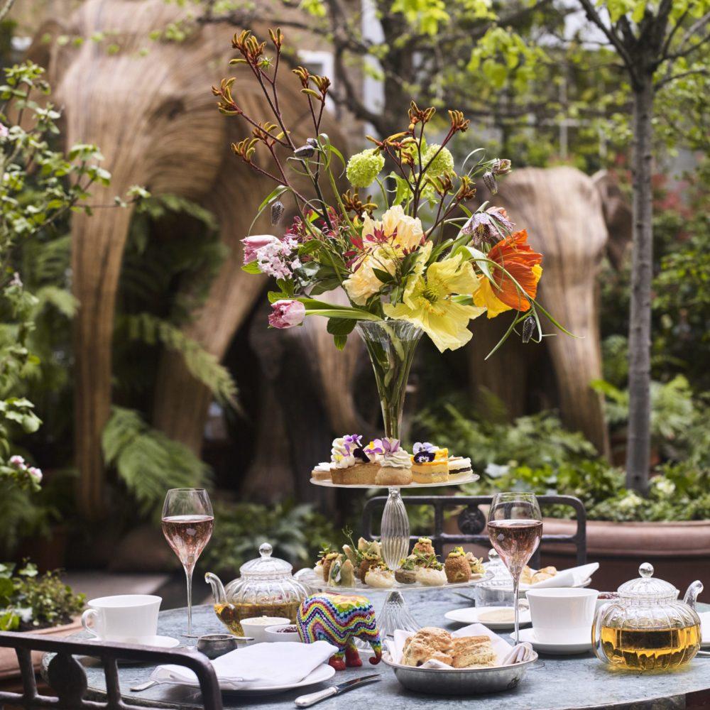 petersham elephant afternoon tea